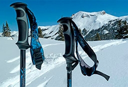 Как выбрать горнолыжные палки